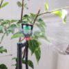 sprinkler grønn-rosa stativ –